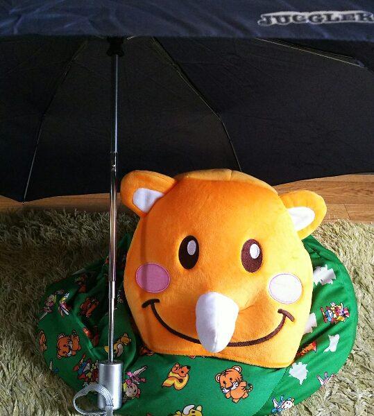 今日は 札幌ジャグフェス 外れたから家で大人しくしてますww 今日も雨なので お出かけ出来ないね  ツノっち(´・ω・`)