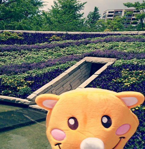 〜東京都のとある公園〜 『今日は東京都のとある場所に来てるよ。画像は目的地近くの公園を通ったところ。この画像だけでわかったら全国の公園博士だ!』