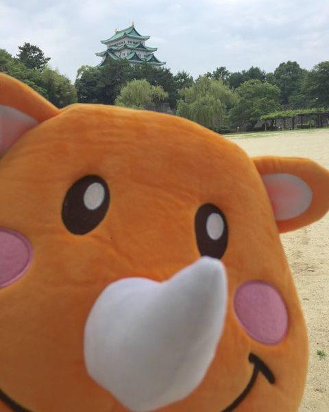 【ちょっと遠いけど名古屋城かっこいい】