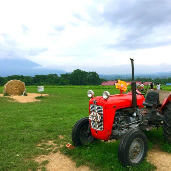 農作業中ですよ❤️ 北海道の広い大地でメロンを作ってるツノっちです💕笑 是非ぶどうの他にメロンをリールの仲間入りにして下さいなっ♪(๑ᴖ◡ᴖ๑)♪