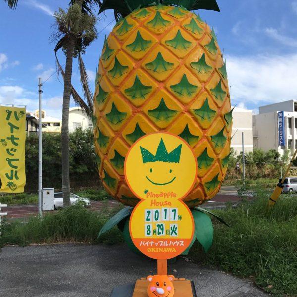 ツノッチと巨大パイナップル