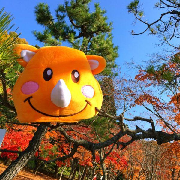 ツノっちスマーイル❤️〜秋Ver〜 ダム公園にて❤️紅葉が素敵すぎる🍁ツノっちとお散歩ー٩(^‿^)۶